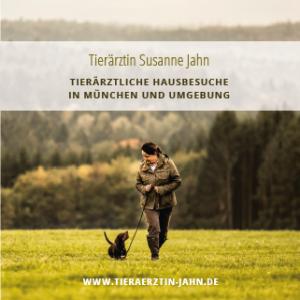 TTM-Jahn
